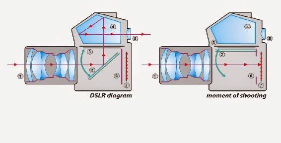 DSLR diagram and moment of shooting