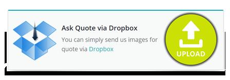clipping path king Dropbox